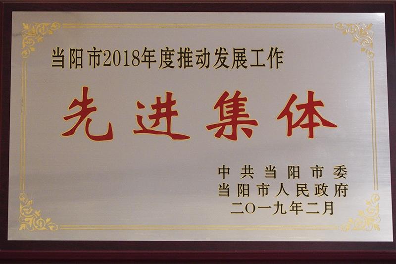 """2018年东方国酒被当阳市评为""""先进单位"""""""