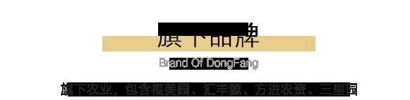 http://www.dydfgj.cn/data/upload/202012/20201222104236_467.png
