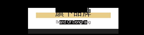 http://www.dydfgj.cn/data/upload/202101/20210112174905_237.png